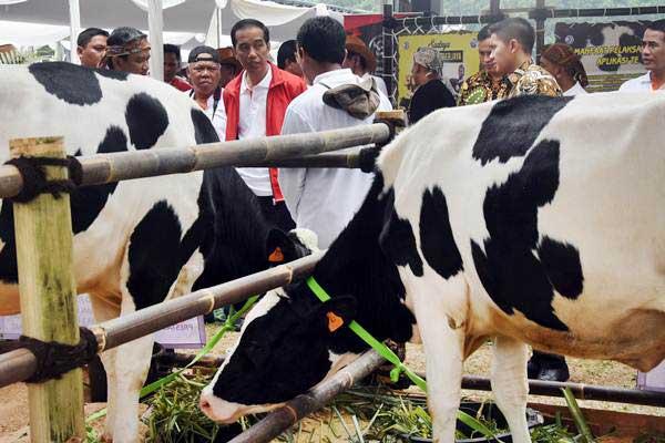 Komoditas peternakan bakal dimanfaatkan oleh pemerintah untuk memperbesar porsi ekspor ke sejumlah negara tujuan.