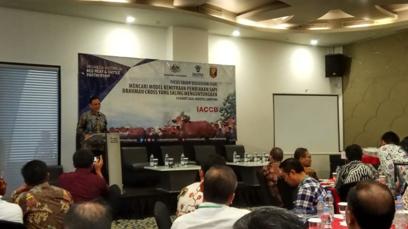 Pemprov Kembangkan Investasi Peternakan di Lampung