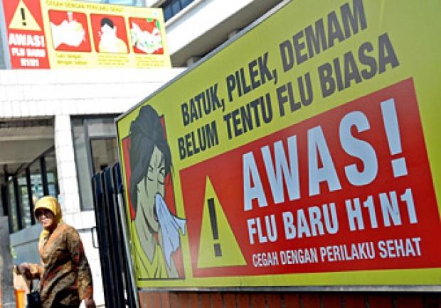 Virus Flu Babi Afrika Serang NTT, Peternak Rugi Puluhan Juta