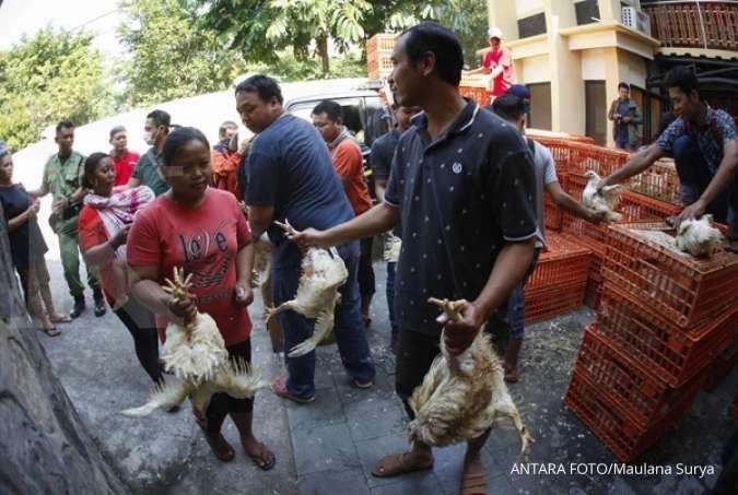 Peternak ayam dan perusahaan poultry atur harga, begini kesepakatannya